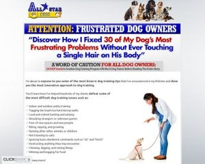 All Star Dogs - The Secret To Making Your Dog An All-Star