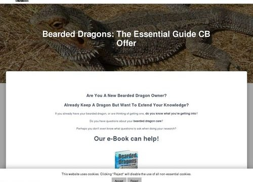 Bearded Dragons: The Essential Guide CB Offer | Bearded Dragons Rock