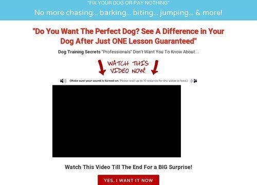 Fix Your Dog – Dog Training Technique
